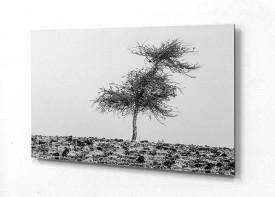 ACP Print 3mm 45cm x 65cm - 1pc White, 1pc Silver